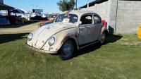 1940s Beetle