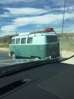 Bus Sighting