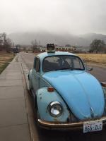 '73 Beetle