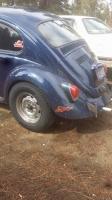 Beetle Bob Beetle