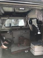 Watkins Glen camping trip