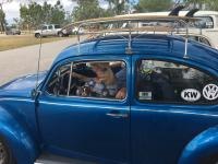 Dog Passenger at VWs over the Skyway 2017