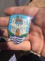 Wolfsburg crest