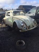 1964 Beetle at Pick-n-Pull, Vancover, 3/25/17