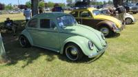 Bugs at the Medera Spring Fling 2017 (April 30th, 2017)