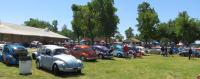 Sedan Bugs at the Medera Spring Fling 2017 (April 30th, 2017)