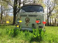 Spring Time and a VW Bus