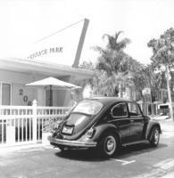 1969 Bug