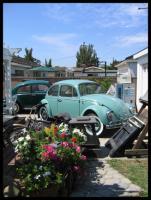 Our VW Backyard