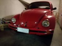 My bug with its new eyes