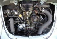 1970 autostick Beetle