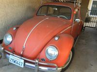 1959 VW- Resto
