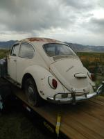 67 Beetle saved