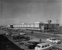 Vintage Volkswagens pictured in 1965
