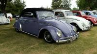 Purple Convertible Bug
