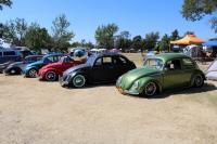 Bug line up