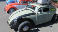 Bugs at Lakeport Camp & Shine 2017