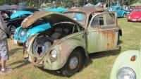 1959 rotten Beetle