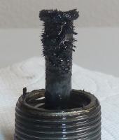 Tranny Plug