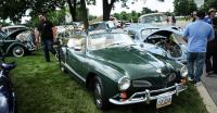 35th Artritis Foundation Classic Auto Show July 2017