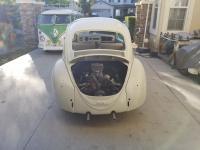 1965 L87 Bug
