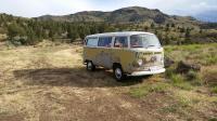 68 bus - arizona yellow