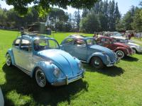 Bugs at the  Nor Cal Vintage VW & Porsche Treffen 2017