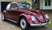 1965 Kauai Bug