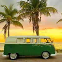 Green Van & Palm Trees