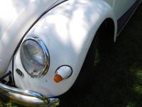 57 Beetle