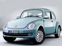 Beetle concept