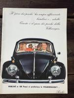 Brochure Beetle