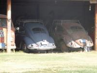 2 1955 Bugs