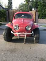 Oval Window Baja Bug