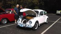 Larry 67 Bug