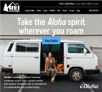 Vanagon in REI Ad