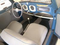 1952 Azure beetle