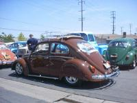 """the Brown bug"""