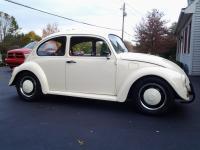 69 beetle