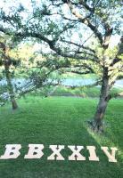 Yard art BBXXIV