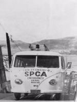 SPCA San Francisco
