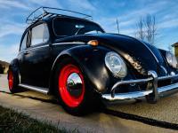 My 1966 Bug