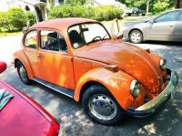 1974 Bug