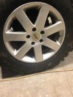 Autec Wheel