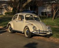 1966 Bug Randy 01, 02