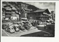 Split and Oval Beetles in Adelboden, CH