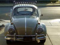 1966 Seesand bug
