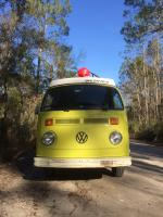 Bus in the woods
