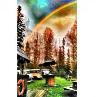 58 Alaska Westy special paint