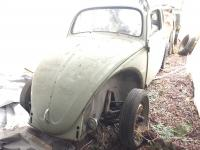 My 1959 beetle project